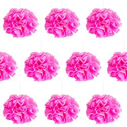 Neon pink paper pom poms