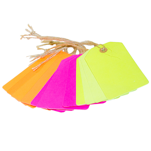 Pack of 12 neon luggage tags