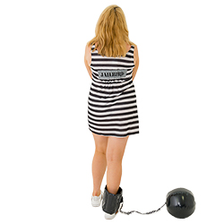 The back of the dress has a jailbird sign on it.