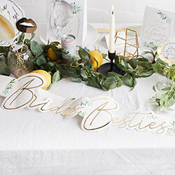 The sash seen on a table with plants.