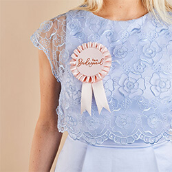 The rosette badge worn by a girl in a blue dress.