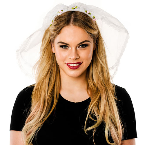 Front View Of White Veil