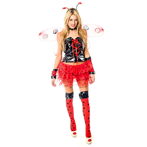 Sexy Lady Bird Costume On White Background