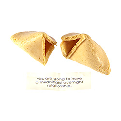 X Rated Fortune Cookies Snapped With Fortune Laid Out