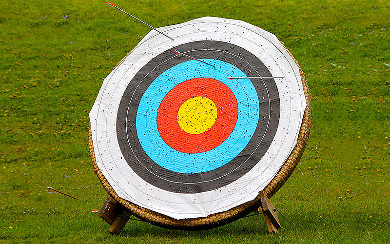 A target for firing practice in the middle of a field, with arrows sticking out of it
