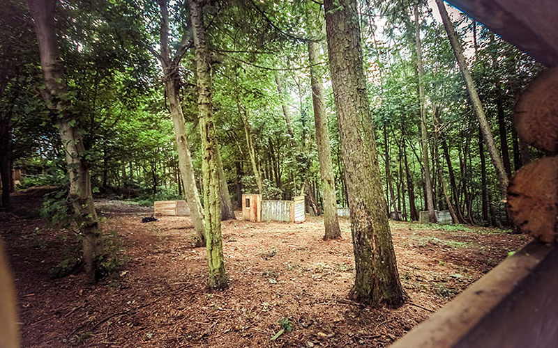 An outdoor paintball zones, with a small hut in the middle of the clearing